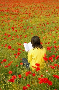 Reading a book with poppies AGE \ Universal Image Group