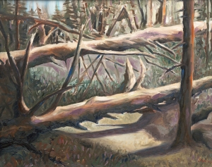 David Drinon, Fallen Trees, o/c, 2012